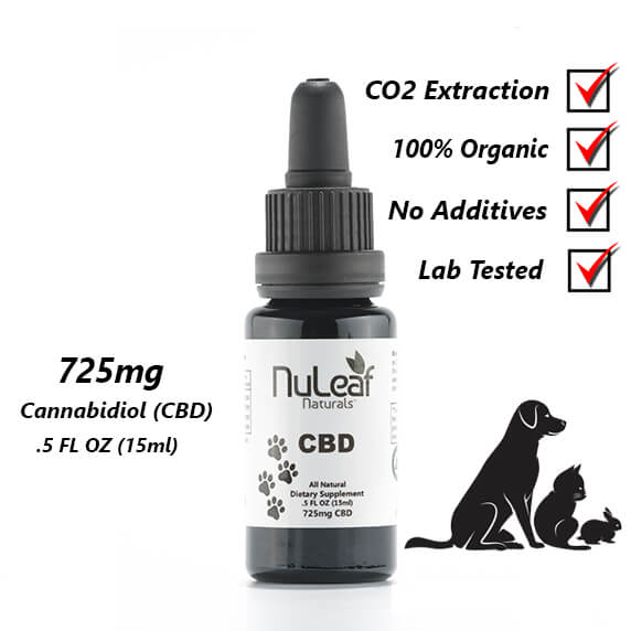 725mg Cannabidiol CBD Oil for pets