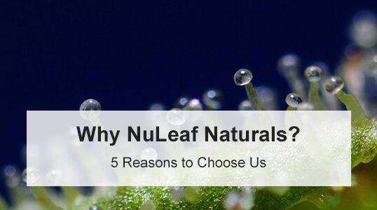 Why NuLeaf Naturals CBD
