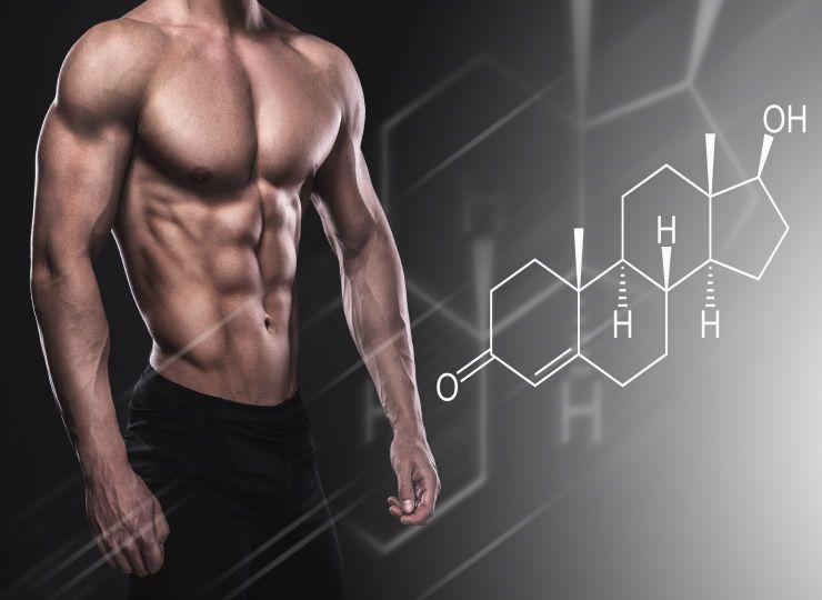 CBD oil for bodybuilding