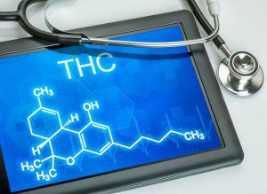Can you reduce a THC high with CBD