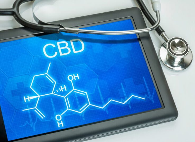 The potential of CBD oil as an antibiotic