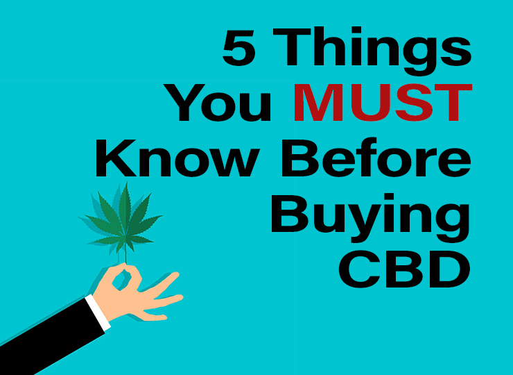 What to Look for When Buying CBD Oil: 5 Things to Look For