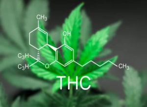 THC in CBD oil