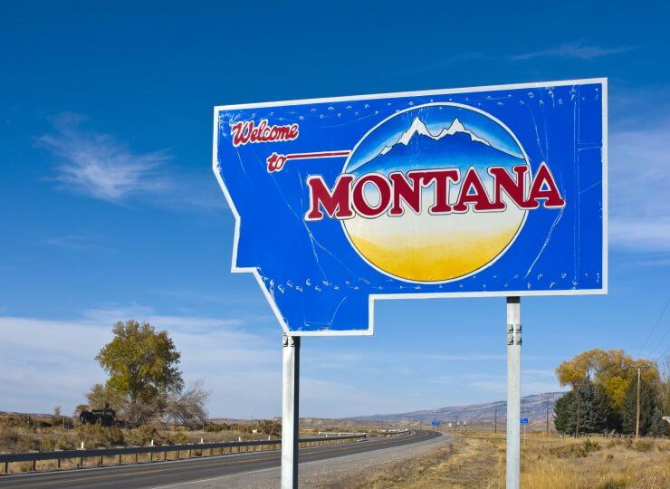 CBD in Montana